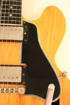 1960-ES335TD-BLD2