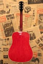 1963-DOVE-NAT2
